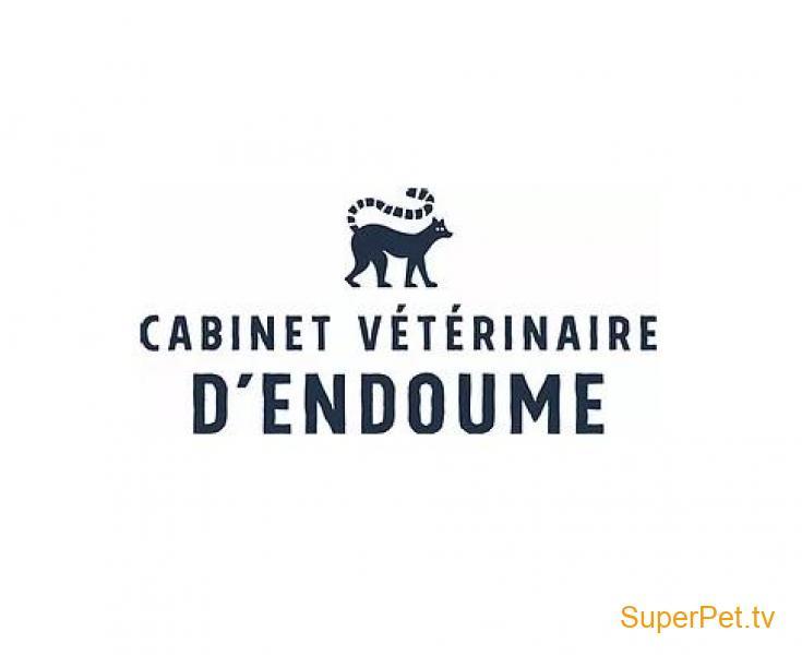Cabinet vétérinaire pour le suivi de tous vos compagnons, Chiens, Chats et NACs !